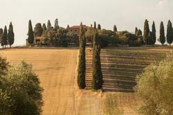 Gladiator - Tuscany