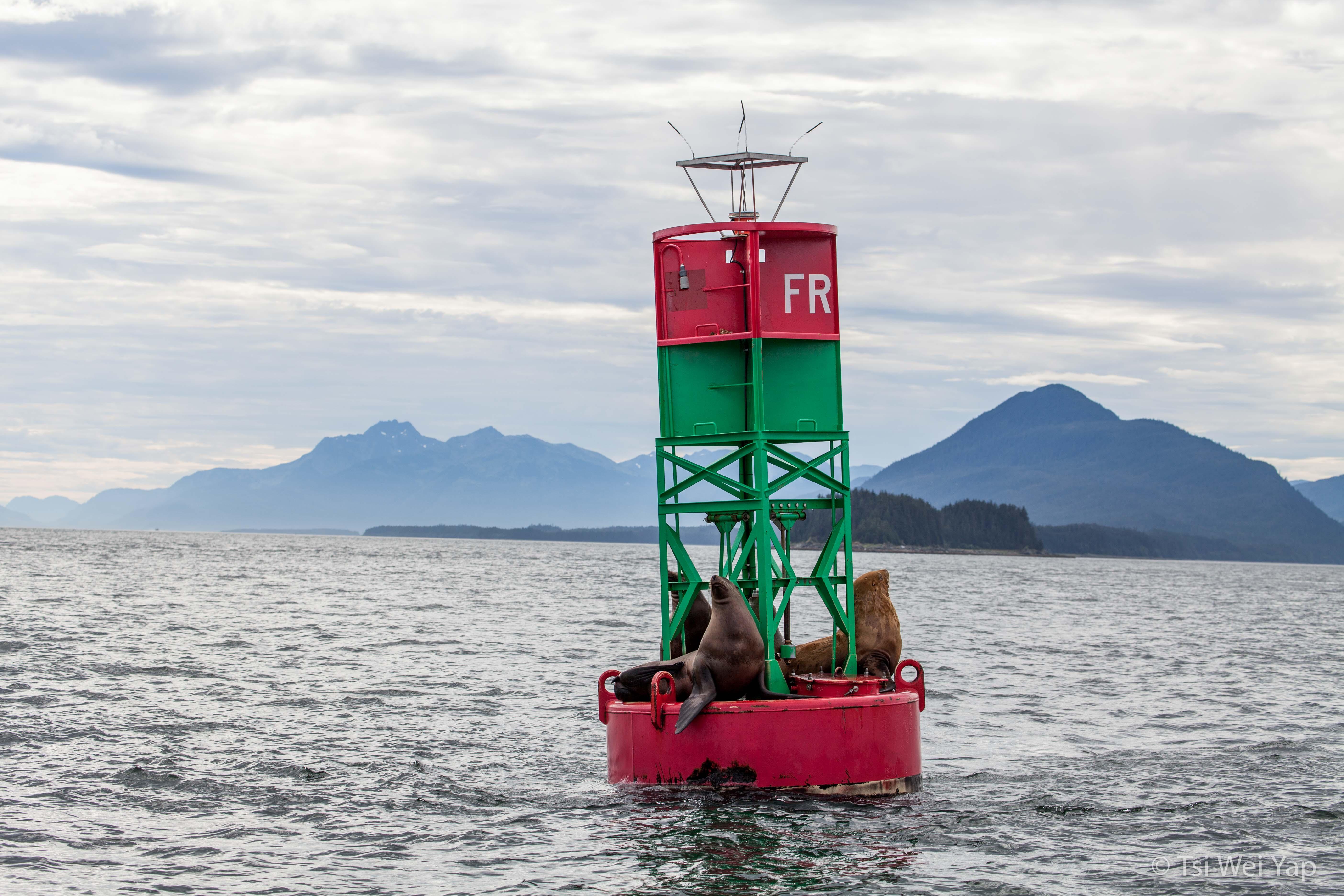 Alaska-9686