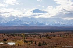 Alaska-1565