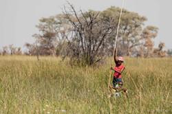 Mokoro Poler - Okavango Delta Botswana