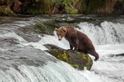 Alaska-2768