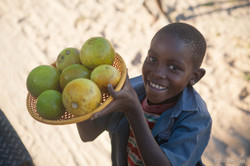 Boy selling fruit - Matobos National Park - Bulawayo
