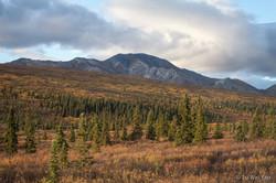 Alaska-1334