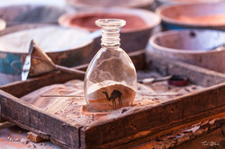 Camel In A Glass, Petra, Jordan