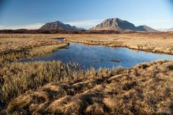 Icelandic West Coast