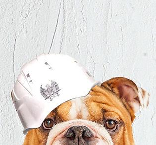 HPトップ用犬.jpg