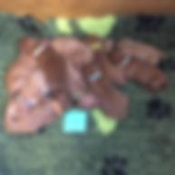 Puppies 1 week old (11).jpg
