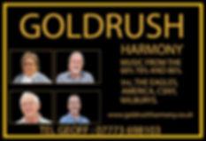 Goldrush Harmony Band