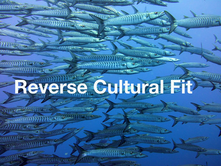 Reverse Cultural Fit