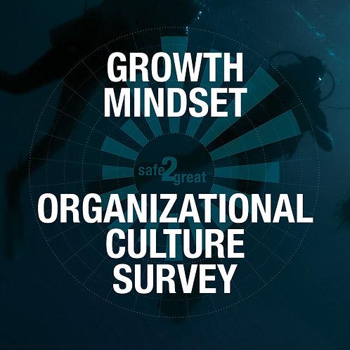 Growth Mindset - Organizational Culture Survey - 20 people