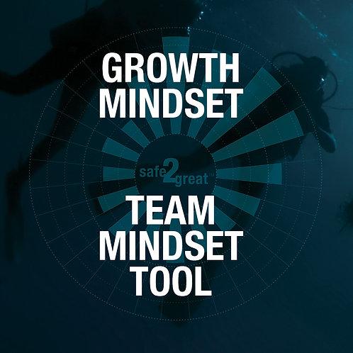 Growth Mindset - Team Mindset Assessment - 6 members