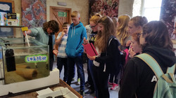 Museum of Islay Life