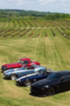 Shelby Car club visits Lovers Leap Winery in Lawrenceburg Kentucky