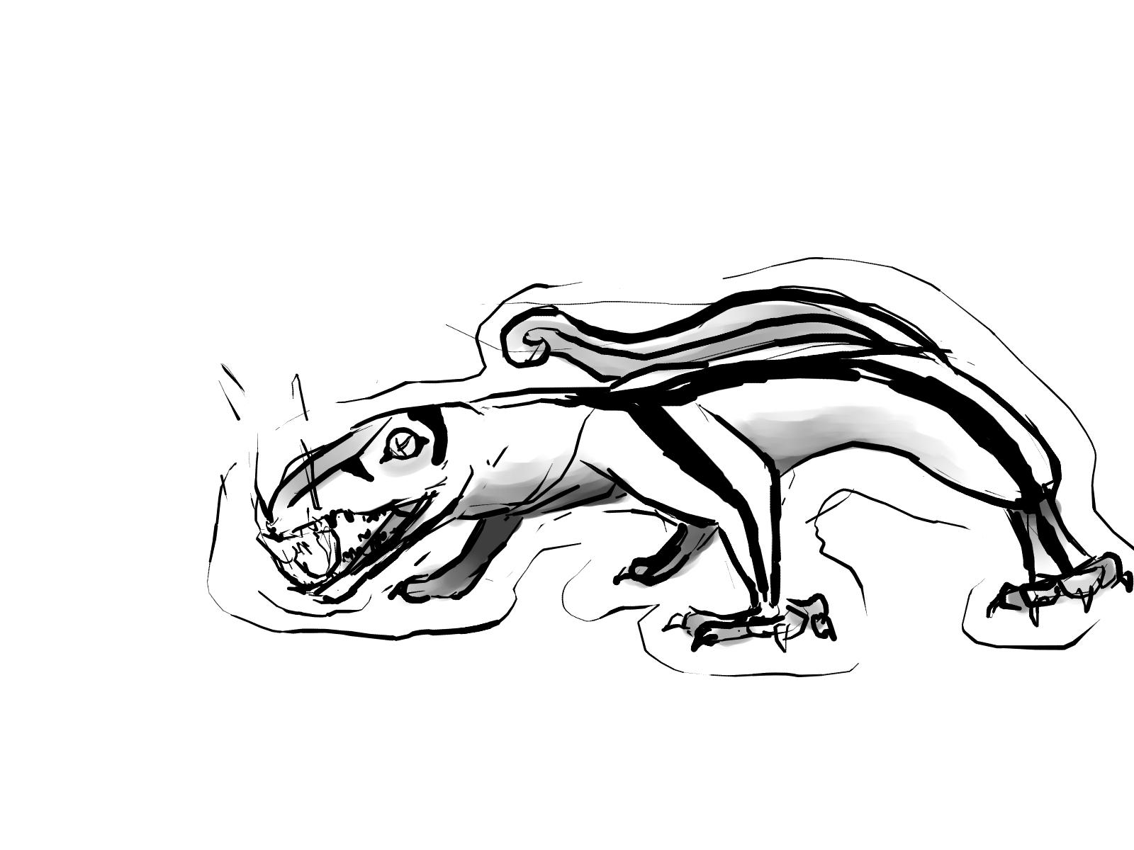 lizards1.jpg