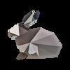 Coelho geométrica