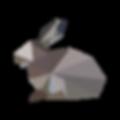 Geometric Rabbit