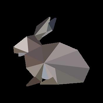 Coniglio geometrica