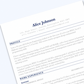 Sections-CV-template-preview-1-344x344.p