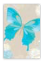 HIC8416 Mini Classical Butterfly
