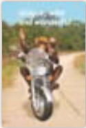 HiC3623 Wild Monkey Ride