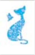 s0094 Exquiste Cat