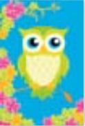 s0101 Adorable Owl