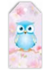 HIC40014 OWL TAG