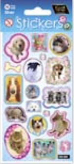 IGD-353 Wonder- Full pets