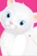 s0115 Gentle Cat