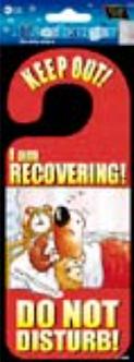 IGD-1039 RECOVER DOOR HANGER