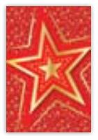 HIC8369 Mini Elegant Star