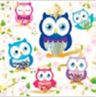 HiC4024C Big Forest owls