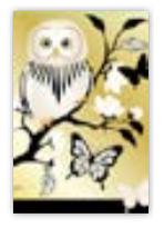 HIC8317 Mini Night Owl
