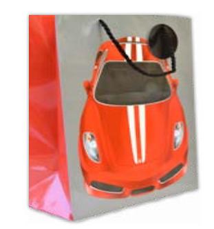 Car L