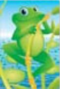 s0114 Gleeful Frog
