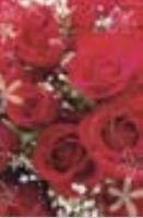 HIC3638 Swirly Roses