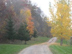 YRF driveway in fall