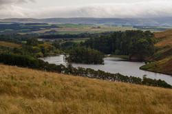 Glencourse