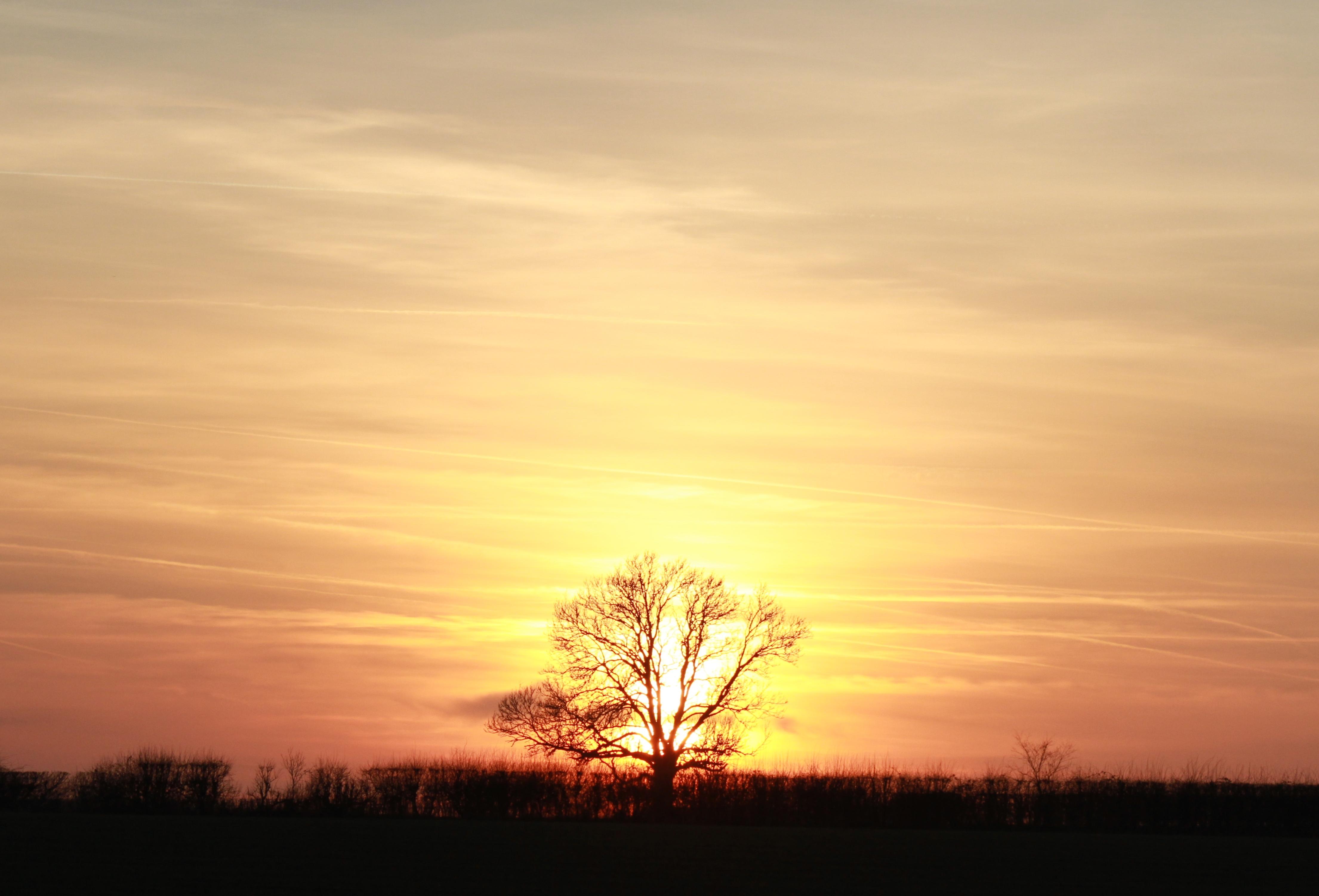Northumbrian Sunset