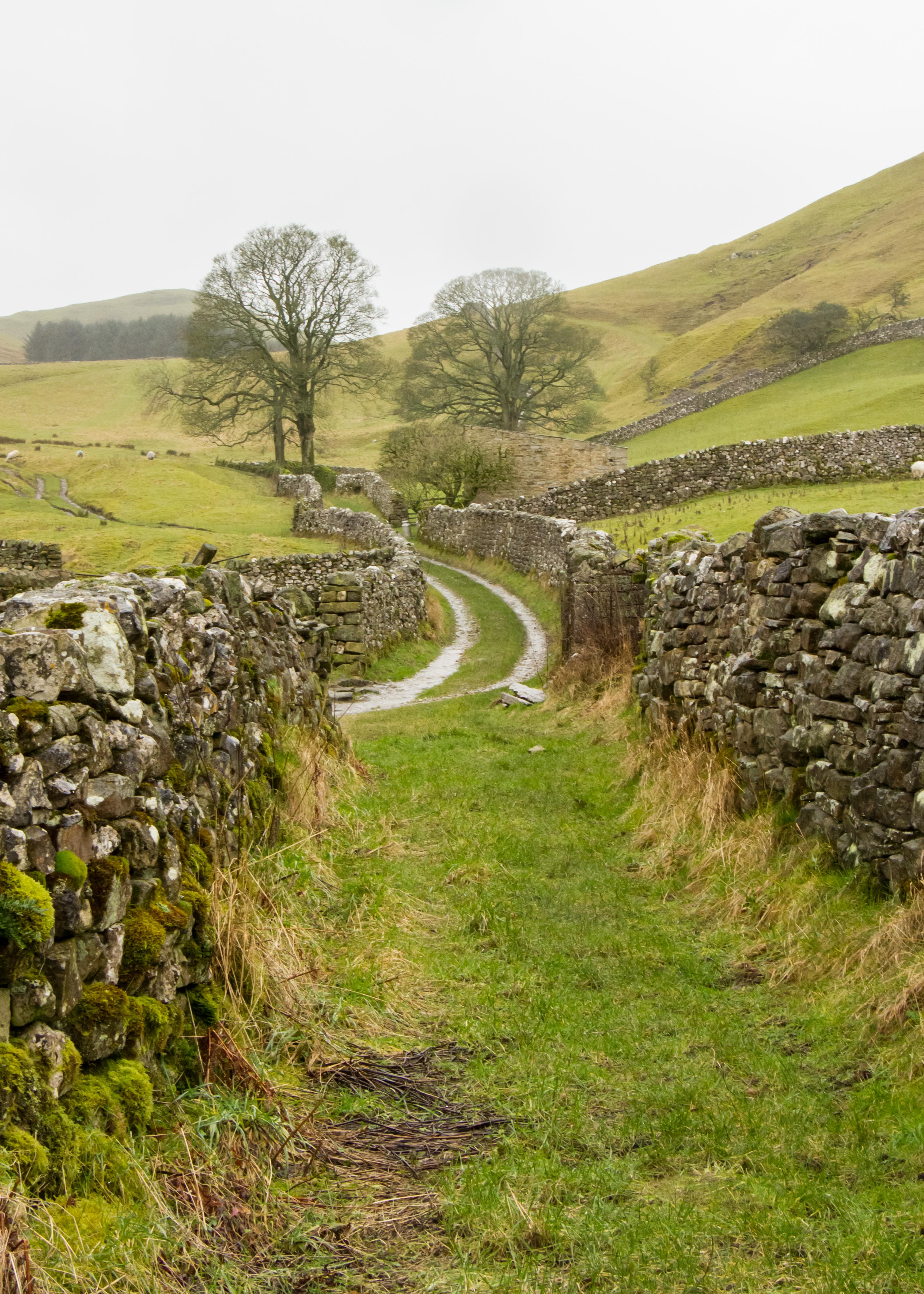 Dales Path