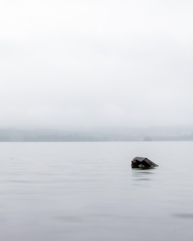 Lakeland Mist