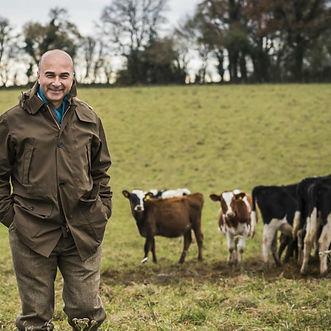 cows-cropped-600x600.jpg