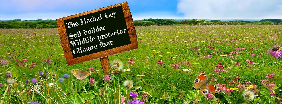 Land-alive-leys-board-letterbox4.png