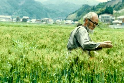 fukuoka-one-straw-revolution.png