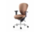 Sphere modern back care chair