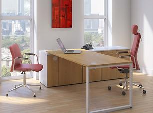 Ambus exec desk.PNG