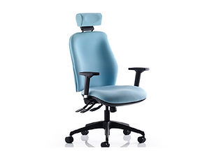 Serenity back care chair