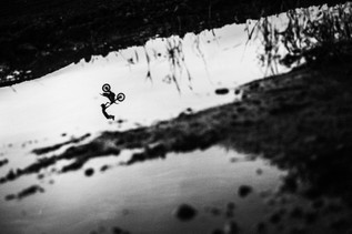 Reflextions of FMX
