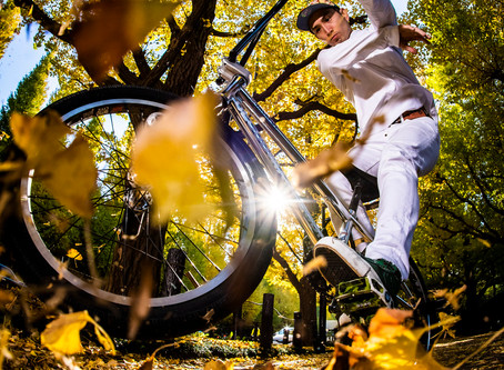 Autumn Cool: Riding the BMX Down Tokyo's Golden Ginkgo Avenue