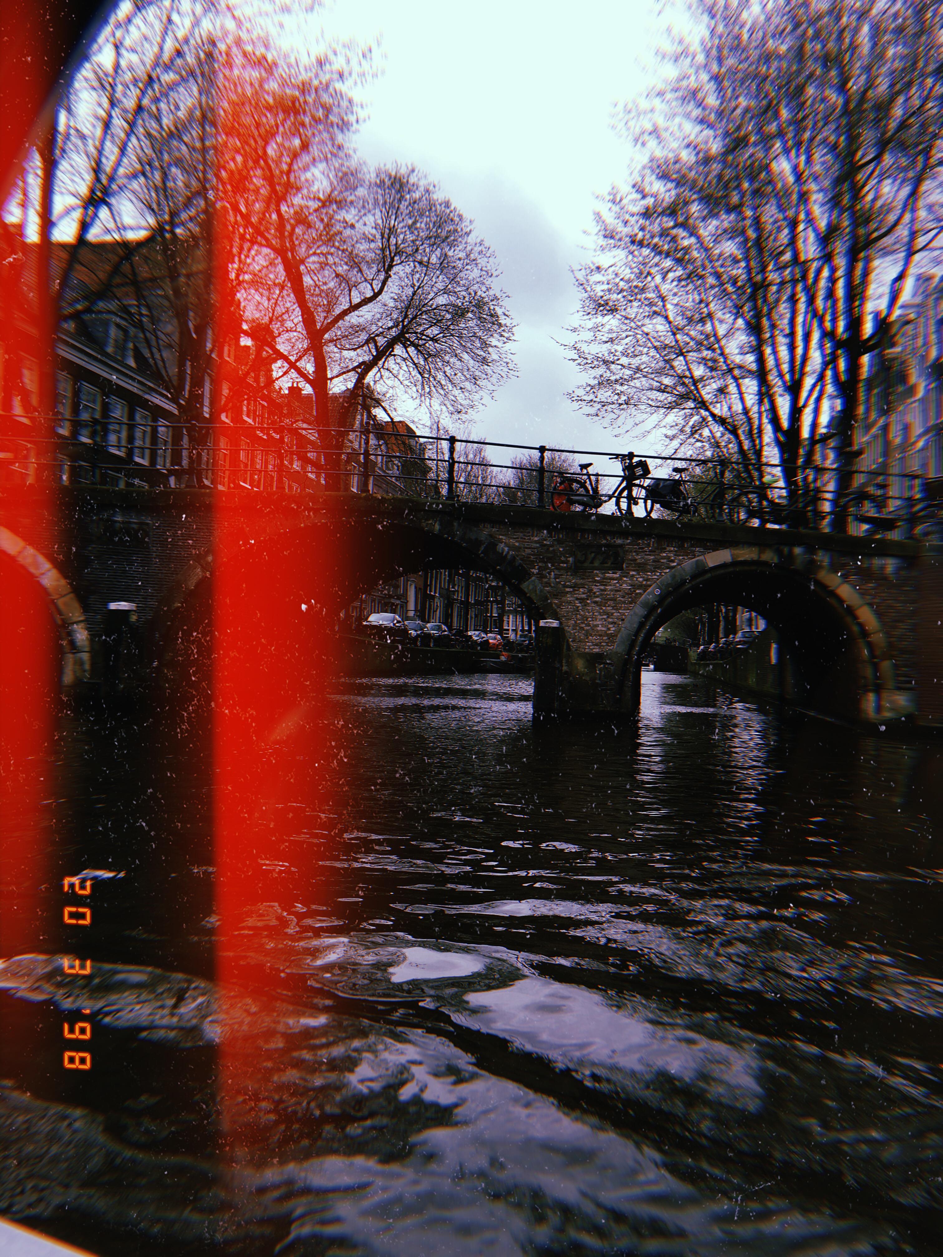 2019-03-20 12_59_39.532